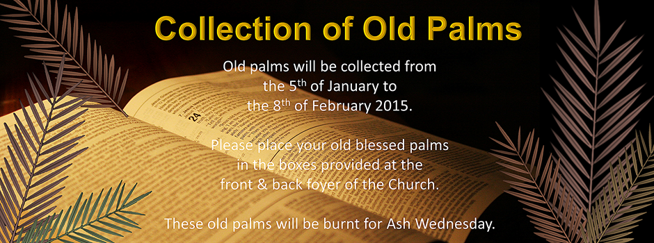 Collection of Old Palms